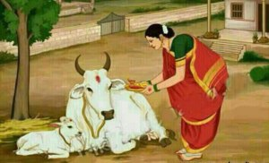 cow worship gau pooj in india