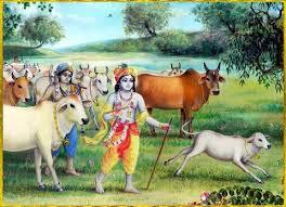 krishna and balarama hercing cows